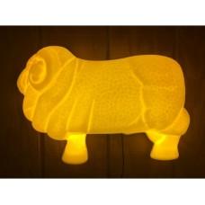 Half Light up Ram