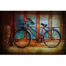Hoi An Bike tin metal sign