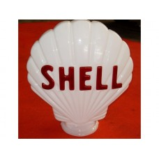 Shell White Clam